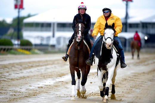 Preakness 2019 Printable List Of Horses Post Positions