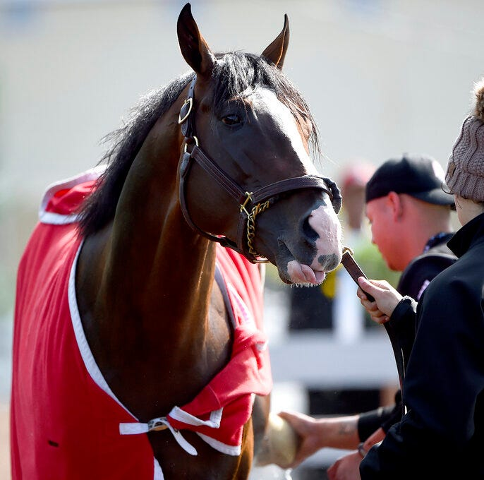 Preakness 2019: How to watch, printable list of horses