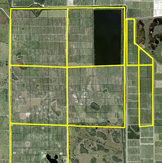 Packers of Indian River sells citrus grove to grapefruit grower IMG Citrus for $31 million