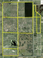 Vero Beach-based IMG Citrus purchased 4,000 acres of grapefruit grove west of Fort Pierce in April 2019 from Packers of Indian River for $31.25 million.