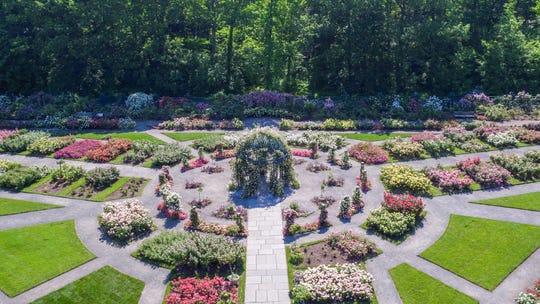 The Peggy Rockefeller Rose Garden at the NY Botanical Garden.