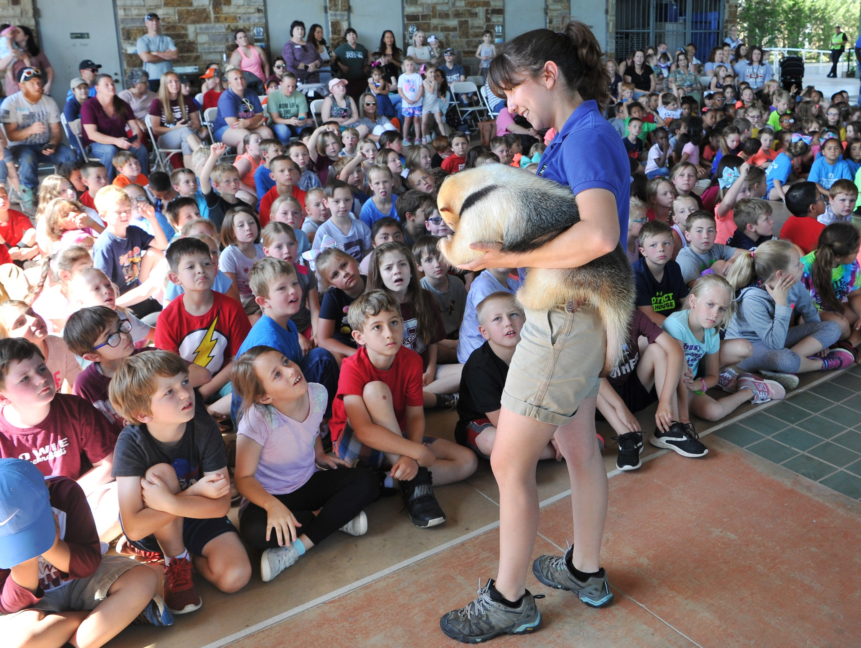Dallas Zoo outreach specialist, Dianne Rivas shows MJ, a some-what-shy  Lesser Anteater to a group of area elementary children during the zoo's annual visit to the River Bend Nature Center, Tuesday morning.