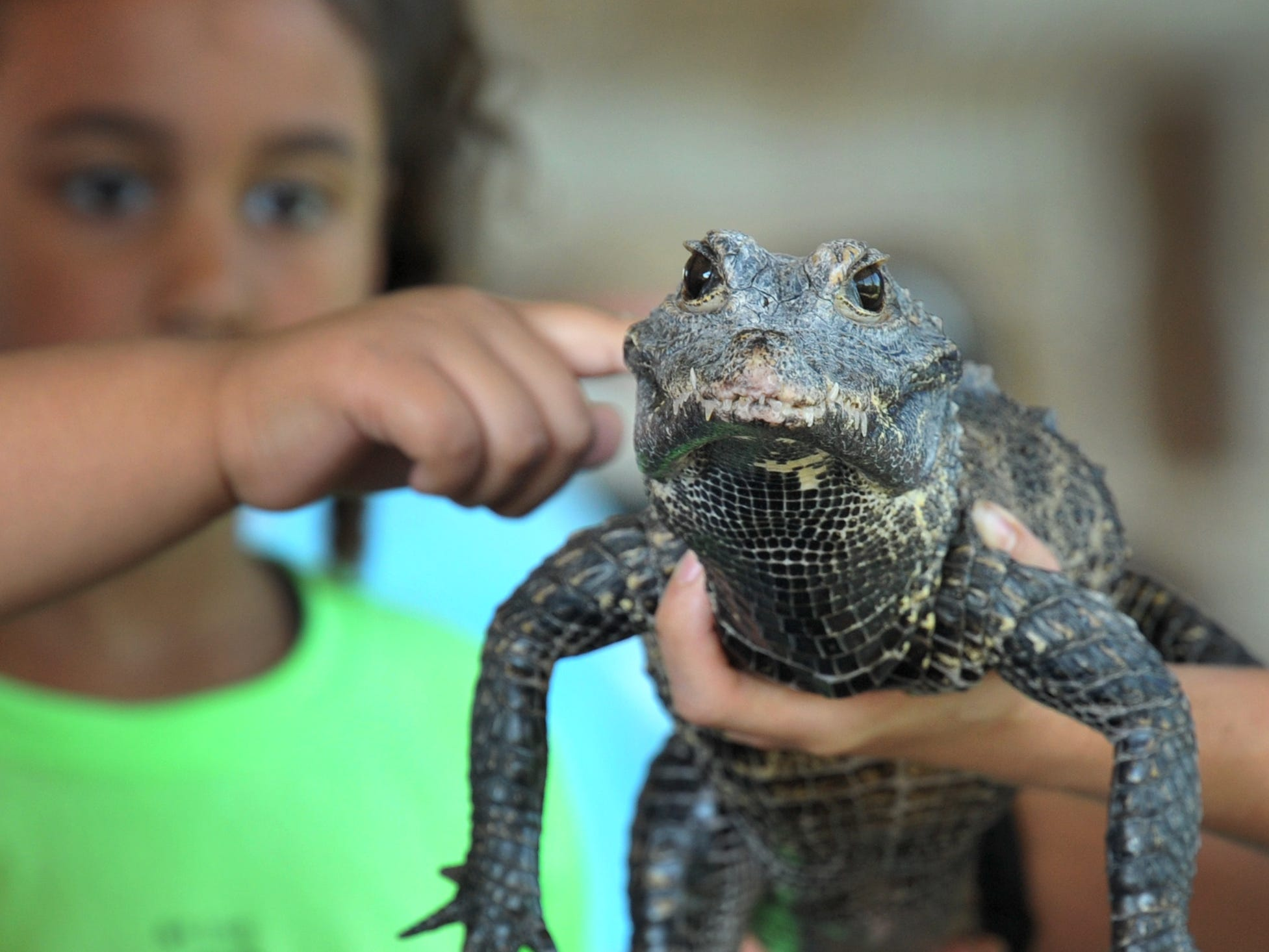 Some parents and kids got a hands-on experience, Monday morning when the Dallas Zoo brought some of their critters to the River Bend Nature Center, Tuesday morning.