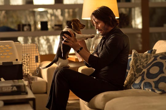 "Keanu Reeves' title character bonds with a beagle puppy before tragedy strikes in the original ""John Wick."""