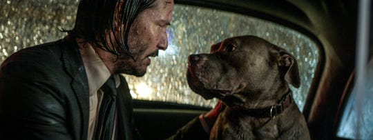 "Even with a heap of assassins after him, John Wick (Keanu Reeves) looks out for his loyal pitbull pal in ""John Wick: Chapter 3 – Parabellum."""