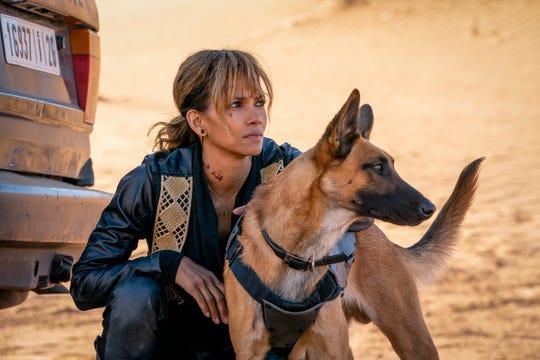 Halle Berry's Sofia is as much a dog fan as John Wick.