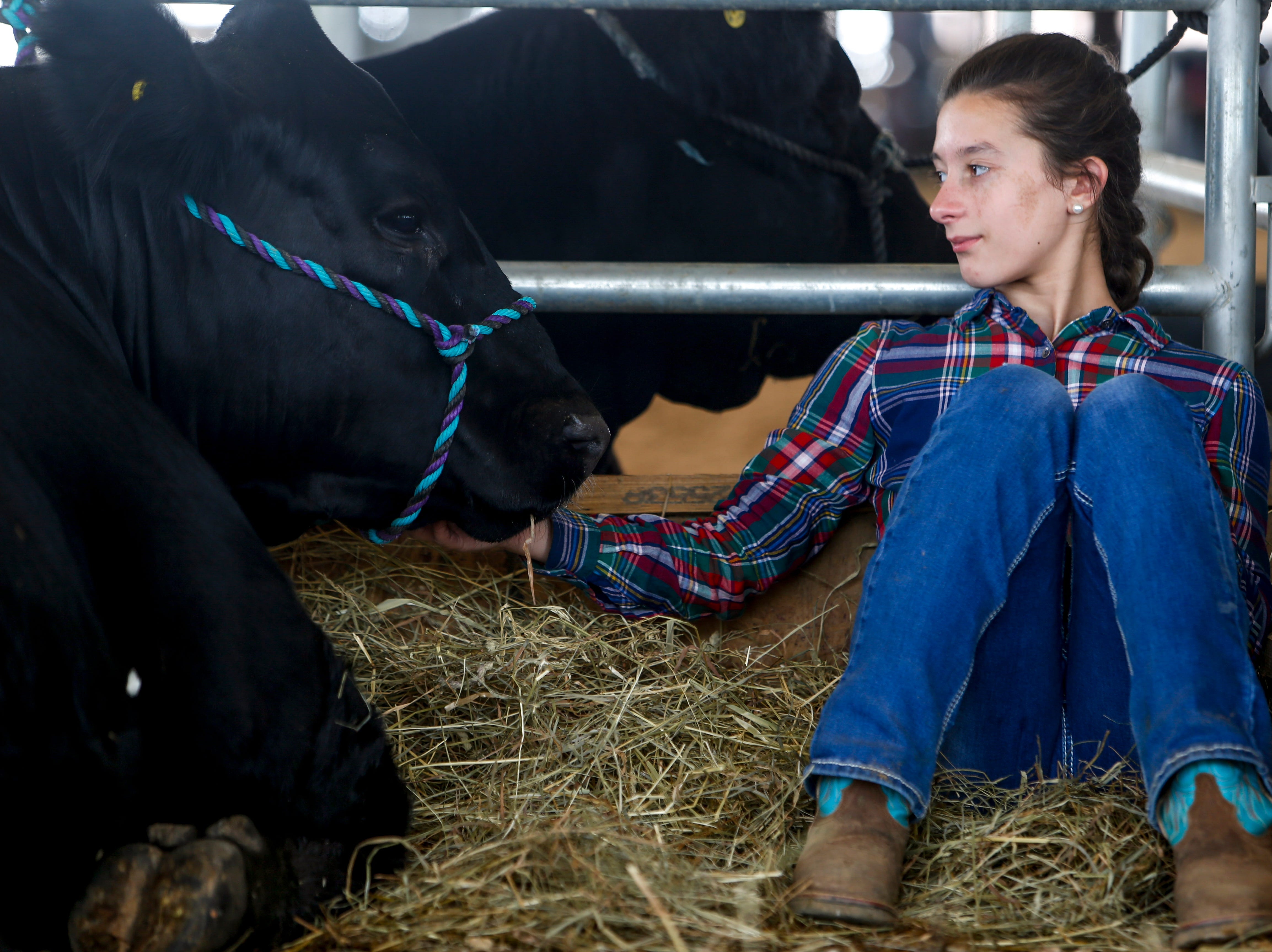 Haleigh Biggar, 12, strokes the cheek of her calf Tank at the John Bartee Agricultural Center in Clarksville, Tenn., on Tuesday, May 14, 2019.