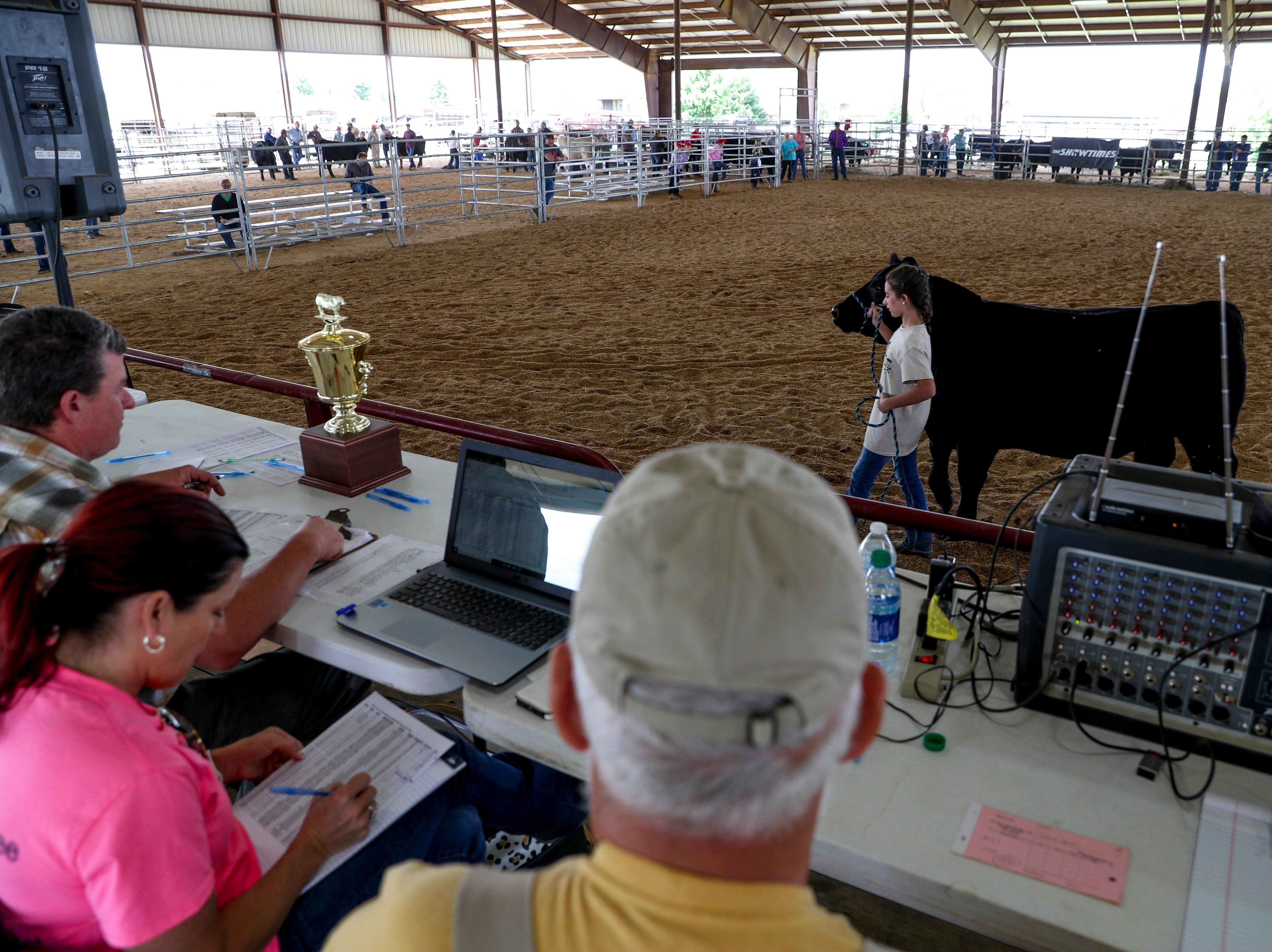 Haleigh Biggar, 12, walks one of her steers around the auction rink at the 69th annual Clarksville Area Junior Better Beef Show at the John Bartee Agricultural Center in Clarksville, Tenn., on Tuesday, May 14, 2019.