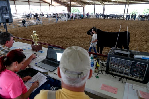 69th Annual Junior Better Beef Show Brings Steers, Tears