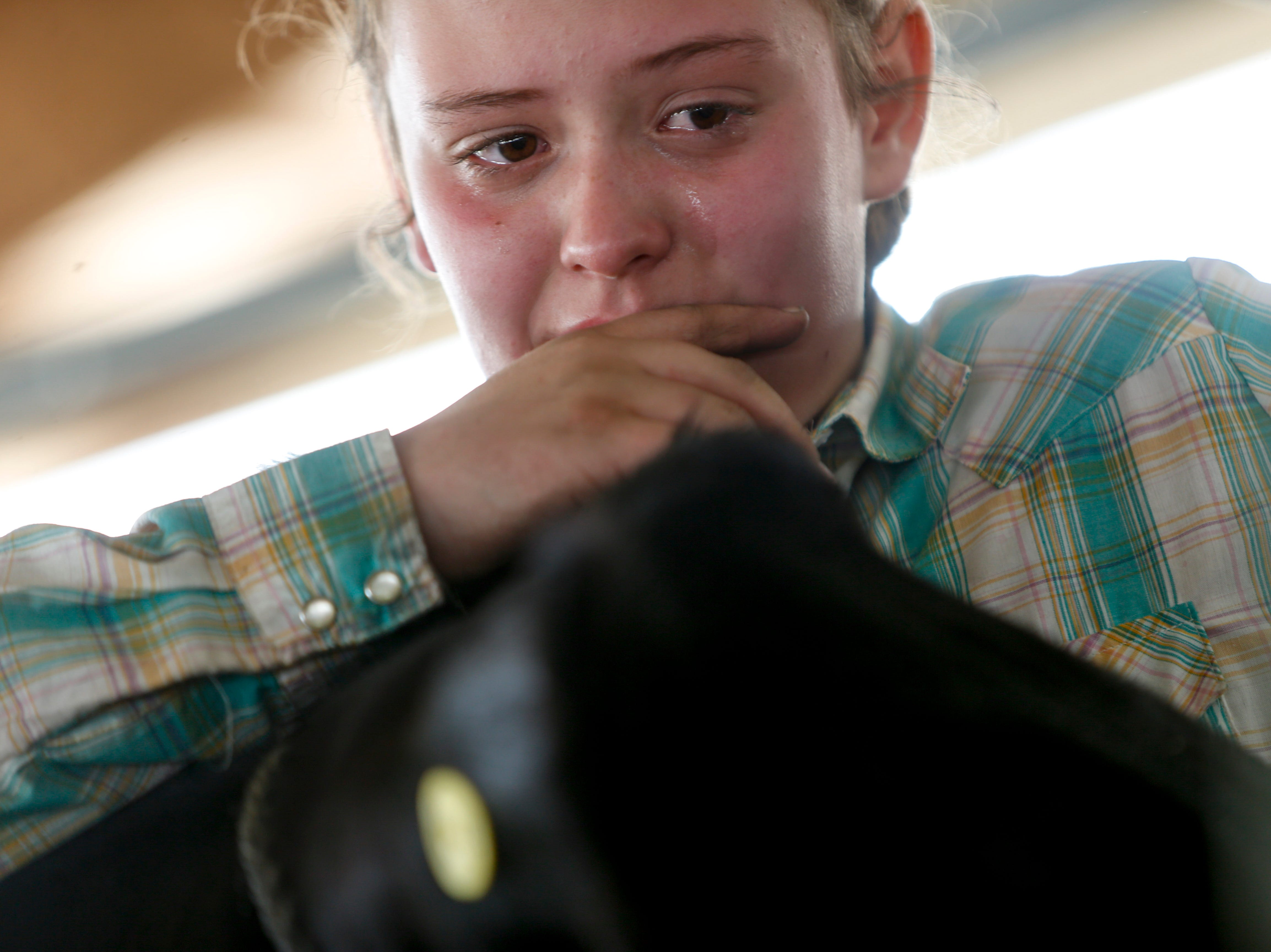 Abby Newberry, 11, cries while leaning over her steer SpongeBob, whom she raised over a year before the Better Beef Show at the John Bartee Agricultural Center in Clarksville, Tenn., on Tuesday, May 14, 2019.