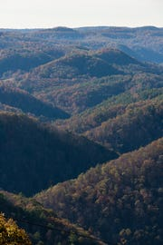 Pipestem Resort State Park in West Virginia now has a zip line.
