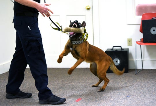 A New York State Police K-9 officer plays with a dog while training the newest class of K-9s at the canine unit's command center in Cooperstown. The young dogs are rewarded for finding the presence of illegal drugs.