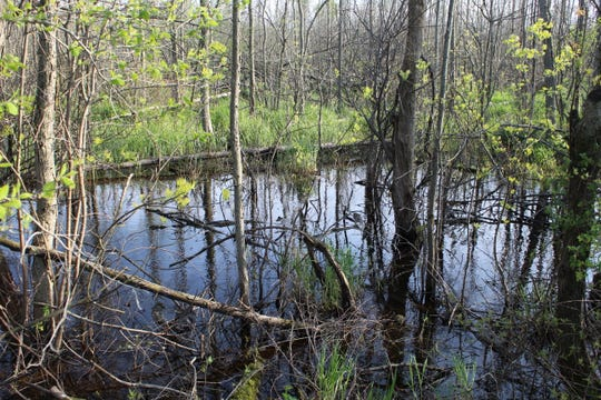 The Ottawa National Wildlife Refuge will hold a Refuge Recycle Round up on Aug. 1