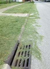 Leaving grass clippings on roadways could results in misdemeanor charges, fines or jail time in Fremont.
