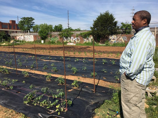Rev. Chris Battle looks out over the tomatoes at BattleField Farms and Garden in the Parkridge neighborhood. May 15, 2019.