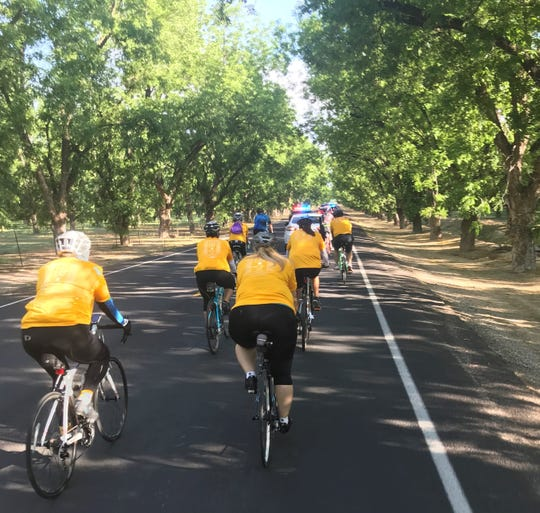 The 2019 Law Enforcement Torch Run will take place Friday, May 24, 2019 in Doña Ana County. The public is invited to join law enforcement officers on the group bicycle ride and run; interested participants are asked to register in advance.