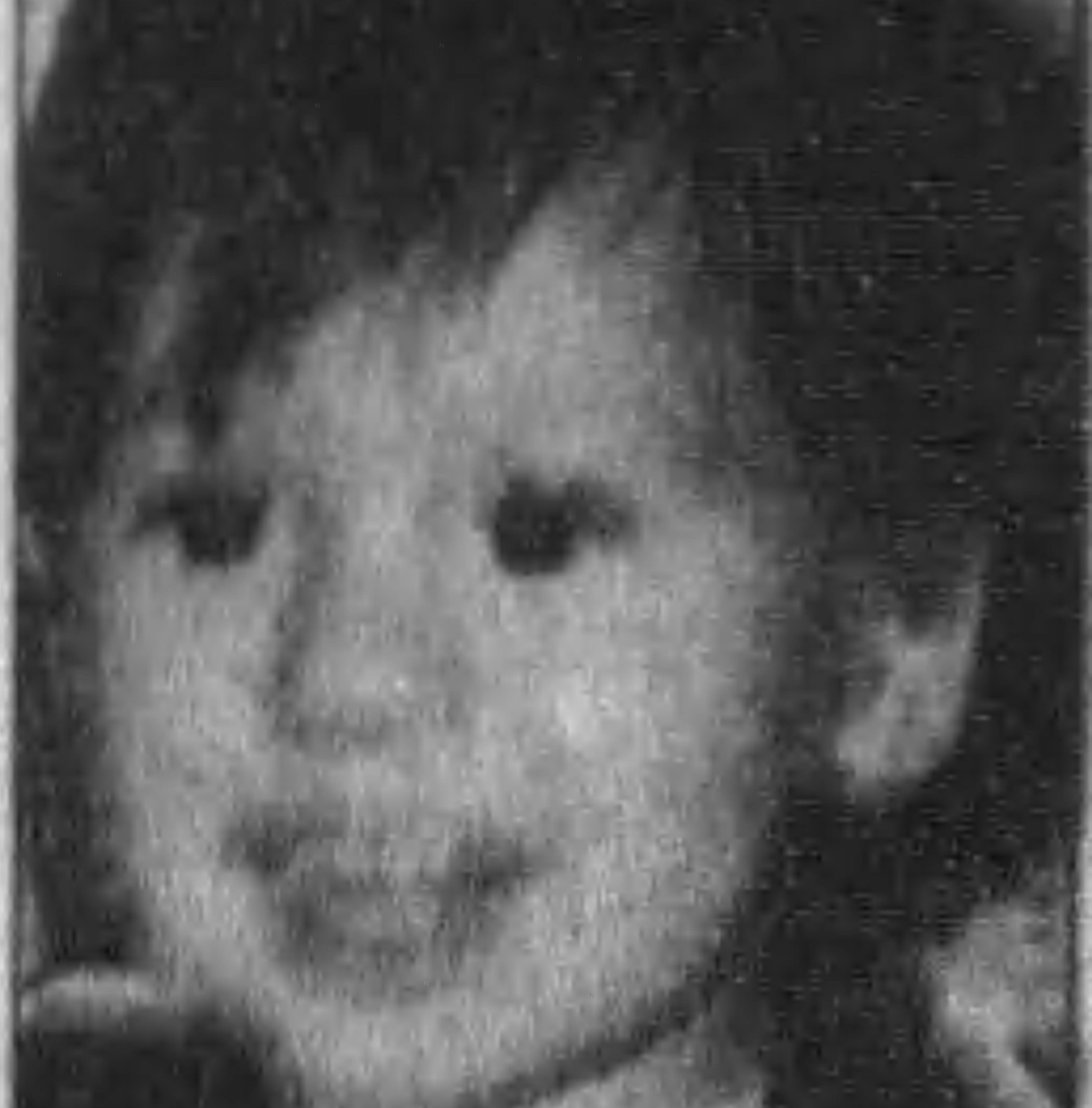 Wood County investigators think they might know who hit and killed toddler Jesse Frey in 1998