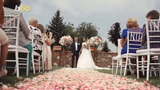This is how much you should spend on a wedding if you're only a guest. Buzz60's Natasha Abellard has the story.