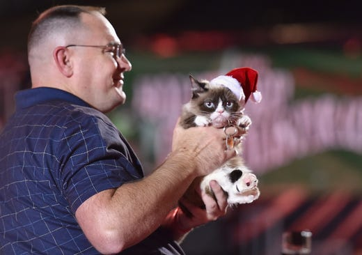 HOLLYWOOD, CA - NOVEMBER 29:  Grumpy Cat attends the 2015 Hollywood Christmas Parade on November 29, 2015 in Hollywood, California.  (Photo by Mike Windle/Getty Images for The Hollywood Christmas Parade) ORG XMIT: 593302221 ORIG FILE ID: 499222968