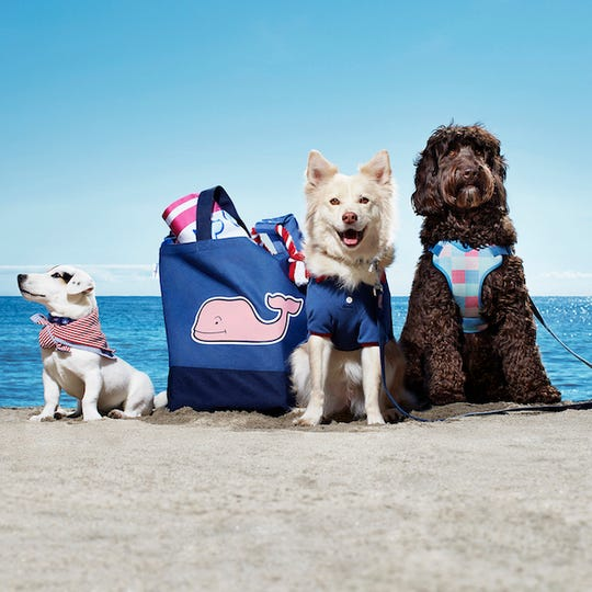 Vineyard Vines for Target include pet items.