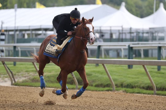 Improbable participates in a morning workout at Pimlico Race Course.