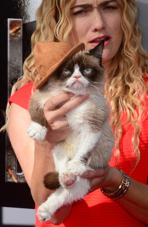 Grumpy Cat  arrives on the red carpet for the 2014 MTV Movie Awards at the Nokia Theater in Los Angeles, California, on April 13, 2014.   AFP PHOTO / Frederic J. BROWNFREDERIC J. BROWN/AFP/Getty Images ORG XMIT: 480854031 ORIG FILE ID: 528952939