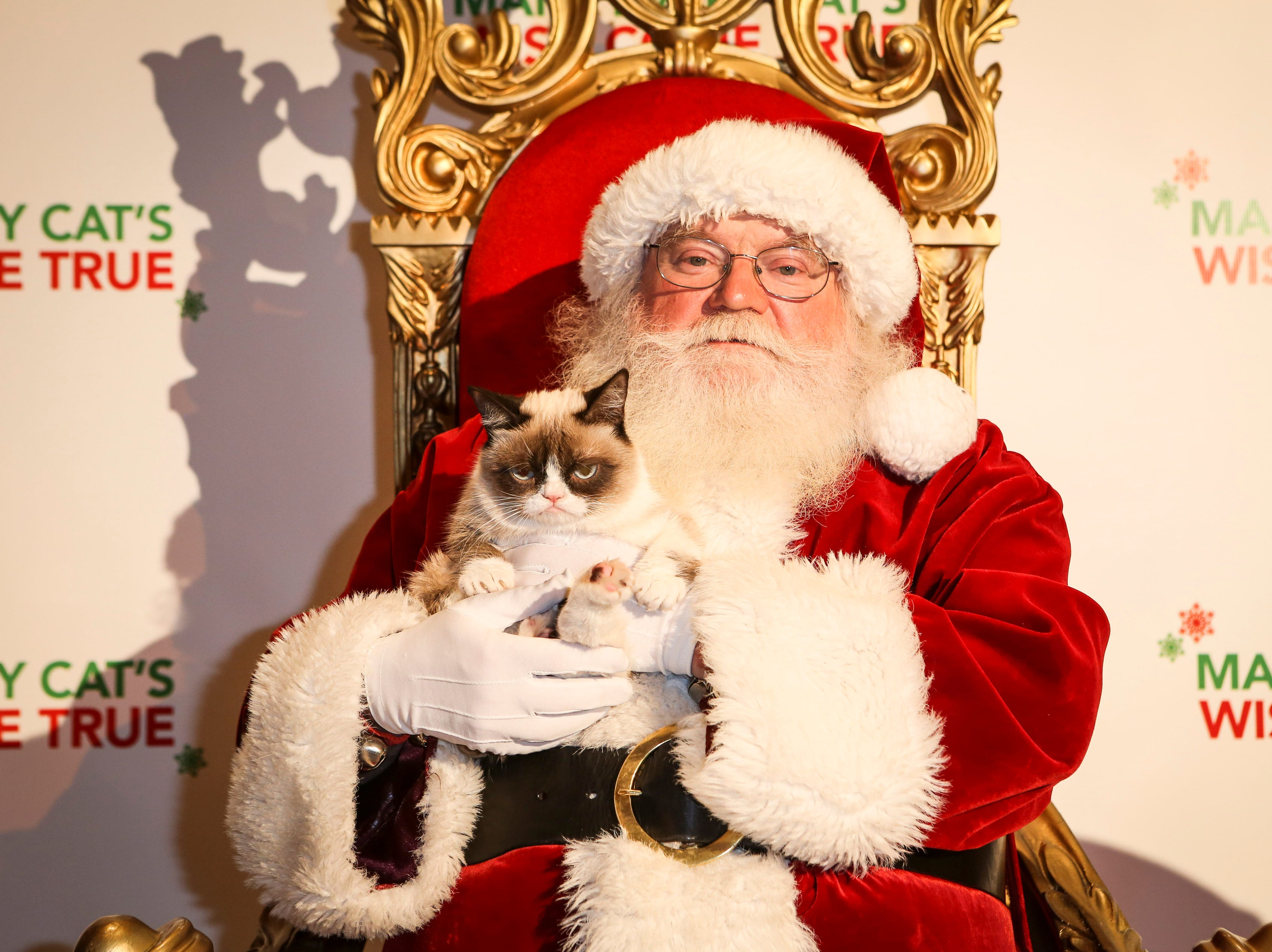 IMAGE DISTRIBUTED FOR FRISKIES - Friskies ìspokescatî Grumpy Cat sits on Santaís lap at the world premiere event to debut the first-ever holiday music video ìHard to Be a Cat at Christmasî supporting the cause of wet cat food for all cats this holiday season, Tuesday, Dec. 10, 2013, at Capitol Records in Los Angeles. The video is available at www.friskies.com/holiday.  (Bret Hartman/AP Images for Friskies) ORG XMIT: CPANY205