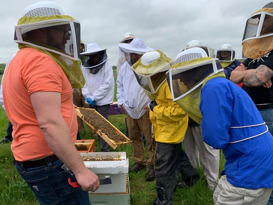 Heroes to Hives founder and instructor Adam Ingrao showing workshop participants a panel containing honeybees as he installs a new hive at Ford's Cherry Hill Farm in Ypsilanti on Saturday, May 18, 2019.