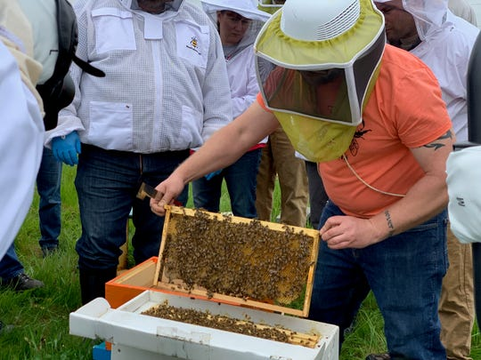 Heroes to Hives founder and instructor Adam Ingrao installing a new hive at Ford's Cherry Hill Farm in Ypsilanti on Saturday, May 18, 2019.
