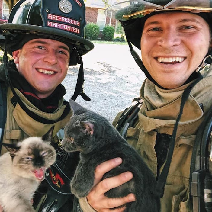 Rutherford County firefighters rescue furry friends: More than a dozen cats, kittens saved from Leanna house fire