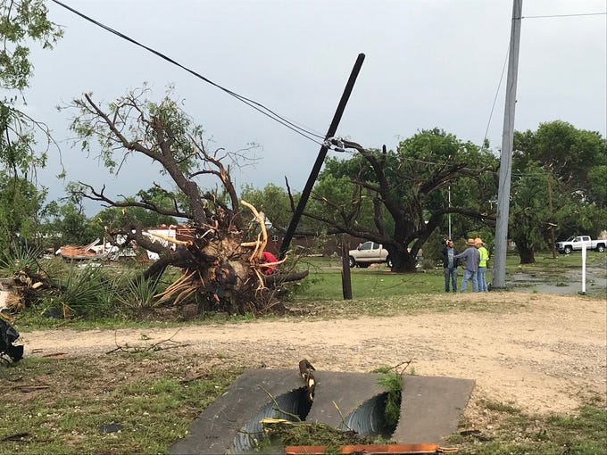 A tree was uprooted during a tornado in Ballinger on Saturday, May 18, 2019.