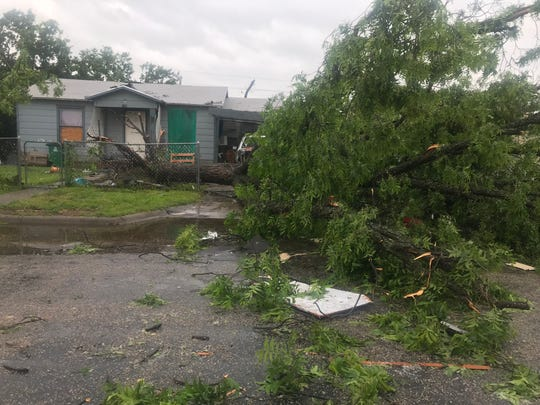 A tree was uprooted on 22nd Street in north San Angelo after a strong storm hit the area Saturday, May 18, 2019.
