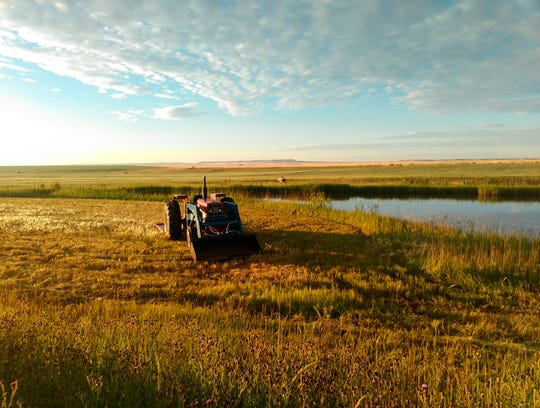 A tractor pauses along a pond developed on Conservation Grains farmland near Choteau, Minn. Grain from the farm, and sourced from other farms, is used in a craft milling venture.