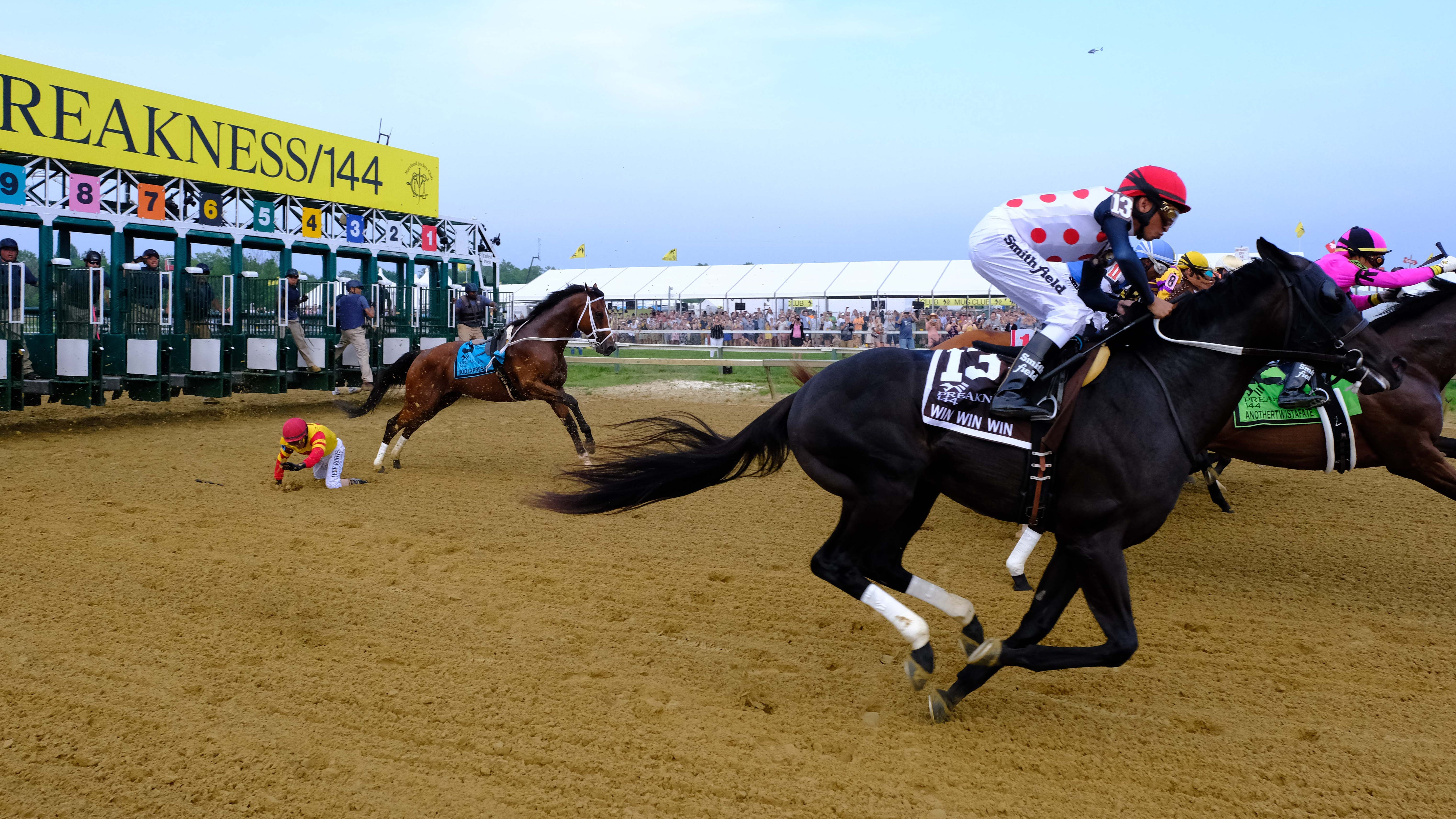John Velazquez falls off Bodexpress at the start of the 144th running of the Preakness Stakes.