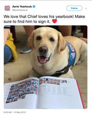 This year's Marjory Stoneman Douglas High School yearbook includes more than a dozen therapy and service dogs that have offered comfort to students in the wake of the Feb. 2018 school shooting Parkland, Florida.