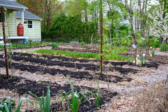 Vermonters Are Keeping Busy In The Garden During The Coronavirus