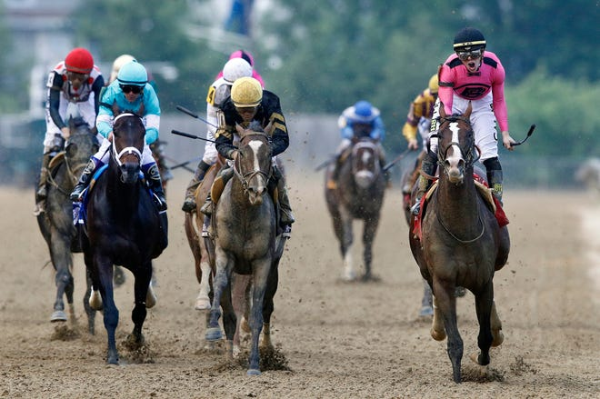 Jockey Tyler Gaffalione, right, yells aboard War of Will as they cross the finish line first to win the Preakness Stakes.