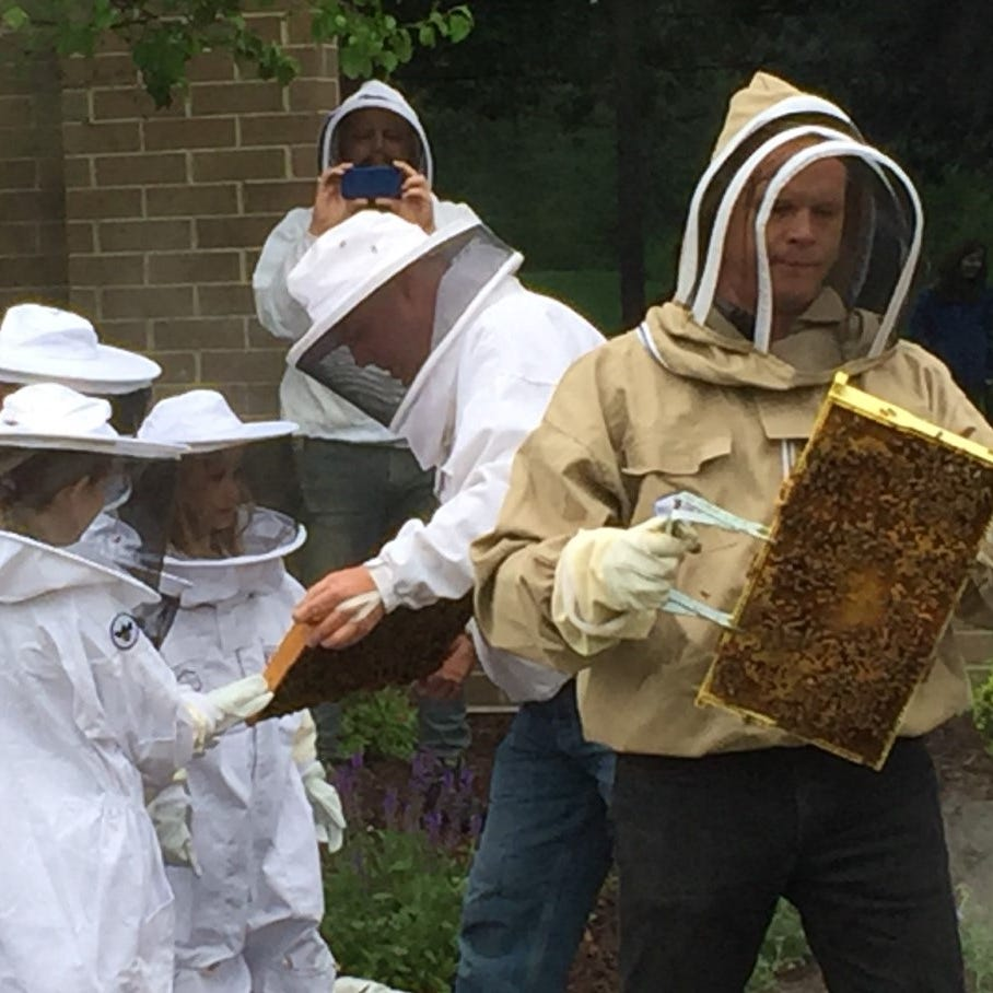 Plymouth Brownies learn about bees with no 'stings' attached