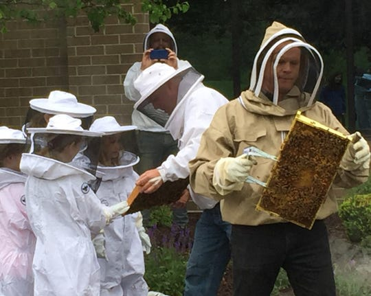 Members of Bees in the D helped educate a group of Plymouth Brownies during a demonstration on Saturday at Argent.
