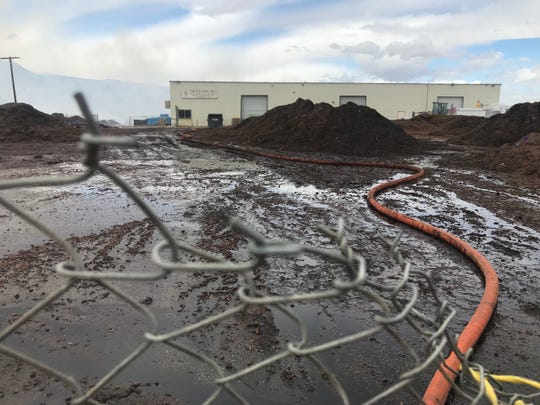 Mounds of dates at Palm Silage Inc., a business on Tyler Road in Thermal that process dates into feed for livestock, were soaked by water from fire hoses.