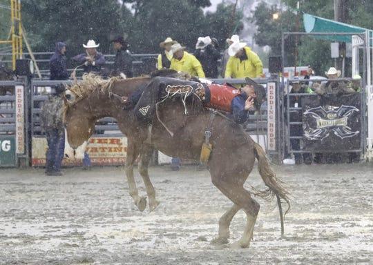 A bareback rider tests his skills in the rain Saturday, May 18, 2019, at the Redding Rodeo arena.