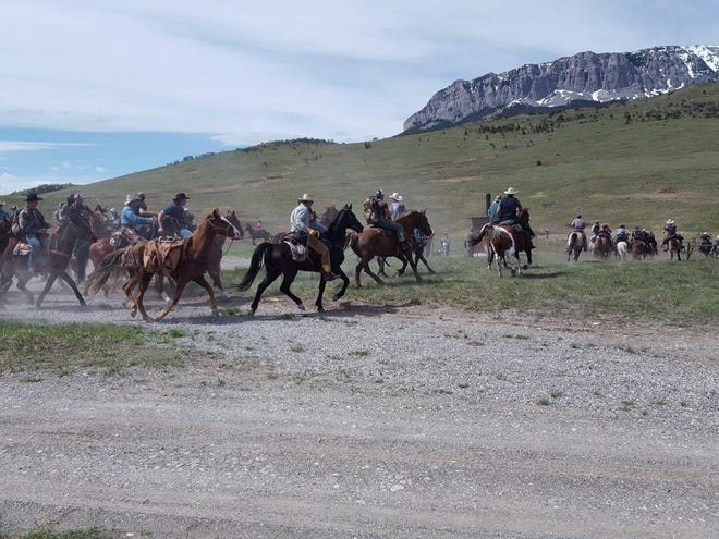 At noon, each May 15, the gates open and people on foot, horseback and in vehicles take off across the Sun River WMA searching for shed elk antlers.
