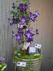 """The best use of theme flower display at the 13th Annual Festival of Flowers in 2018; Diane Tonkyn, for """"More is More, Less is Bore."""""""