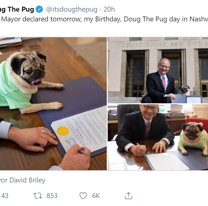 Mayor Briley declares May 20th 'Doug The Pug' day to celebrate Nashville's canine celebrity