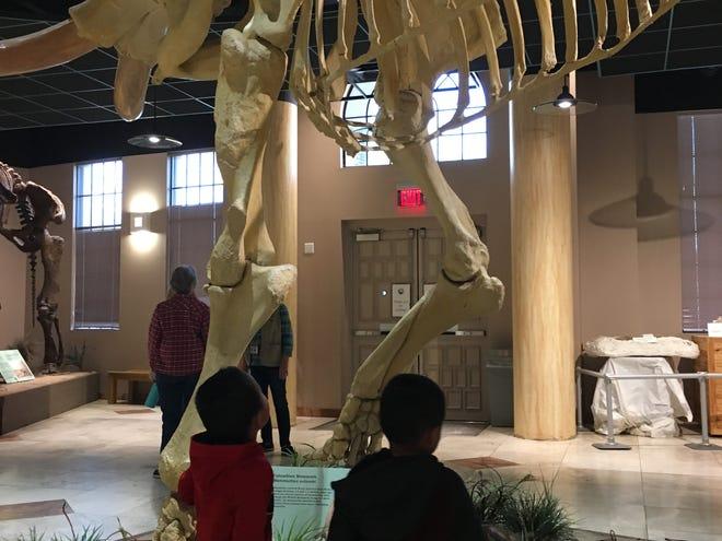 Students visit the Arizona Museum of Natural History as part of the Mesa K-Ready program.