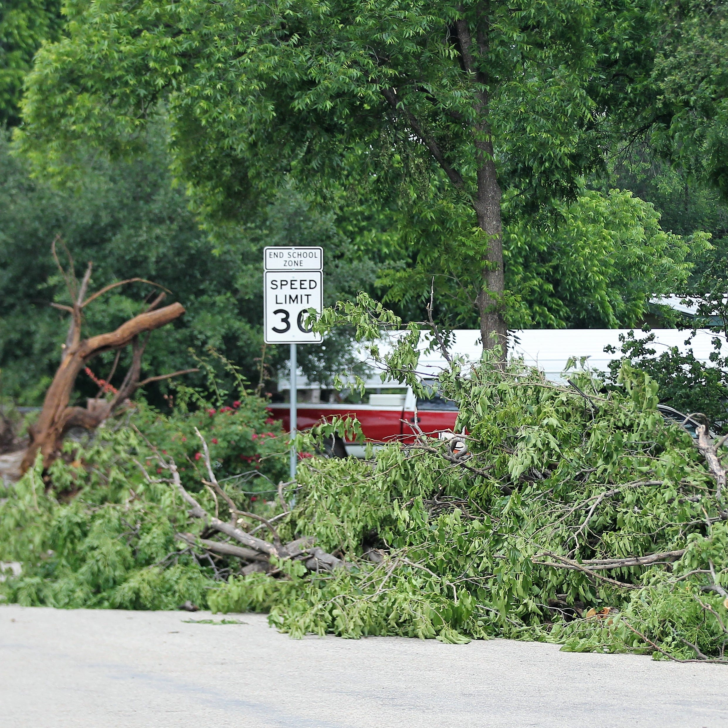 Wondering what to do with storm debris? Here are your options.