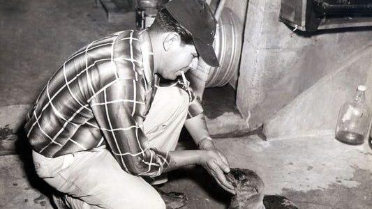 Zoo employee Rudy Romero in May 1958 gently feeds a handful of fish bits soaked in cod-liver oil to the Washington Park Zoo's baby sea lion, which was captured in the Gulf of California. Employees also fed the youngster with a baby bottle.