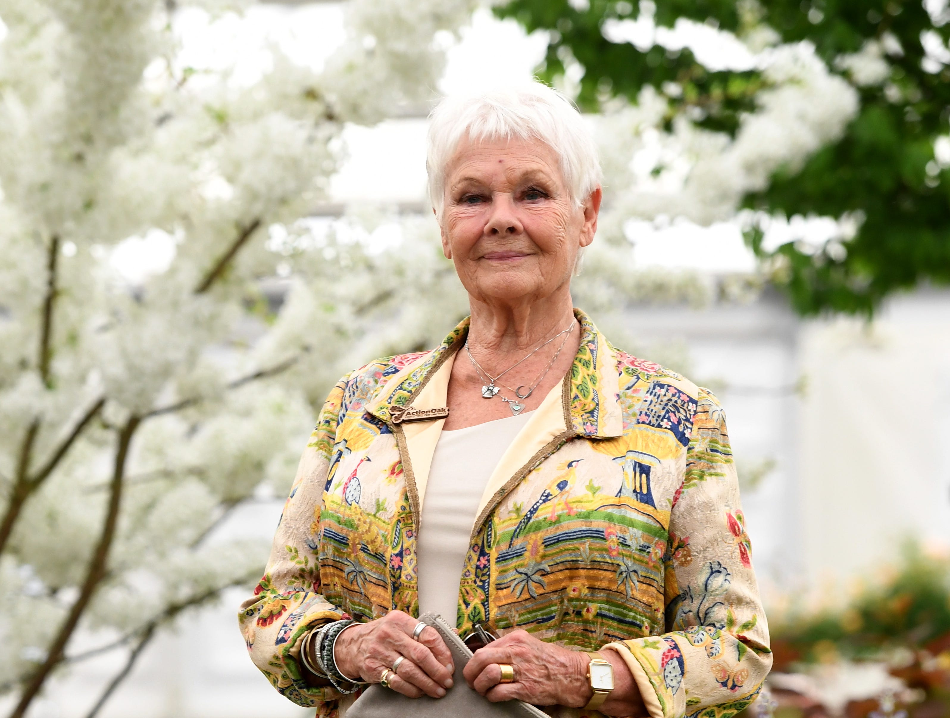 Judi Dench during the press day for the RHS Chelsea Flower Show in London. The RHS Chelsea Flower Show is a garden show held for five days by the Royal Horticultural Society in the grounds of the Royal Hospital Chelsea. It has been held since 1912 and runs this year from May 21-25.
