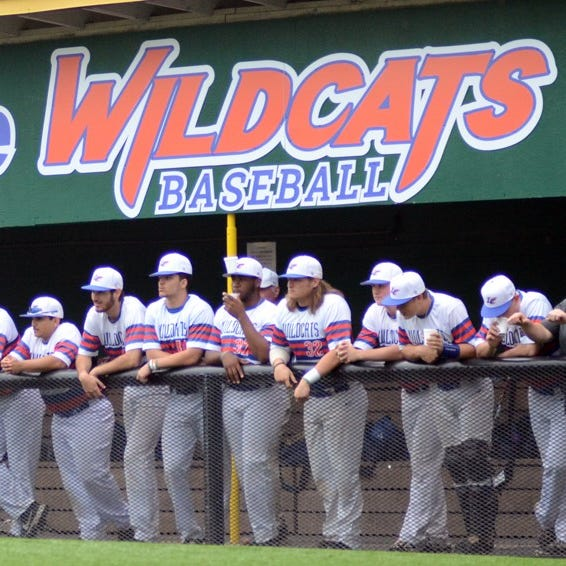 Wildcats turn in historical 2019 season on diamond