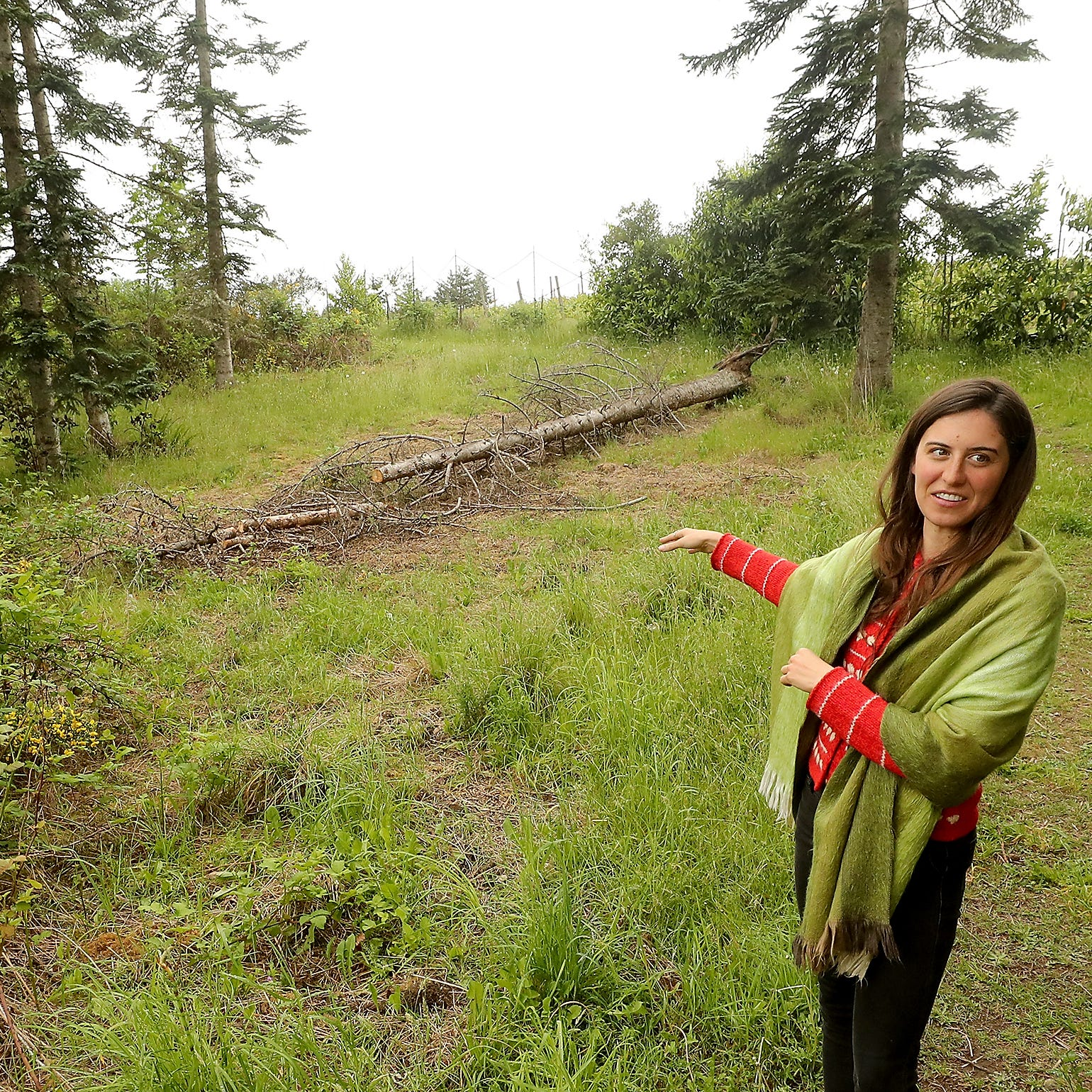 Friends of the Farms planning Food Forest, edible park in Bainbridge